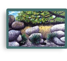 Tree and Boulders Canvas Print