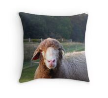 It Took a Long Time to Look This Good! Throw Pillow