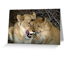 Bonding with love Greeting Card