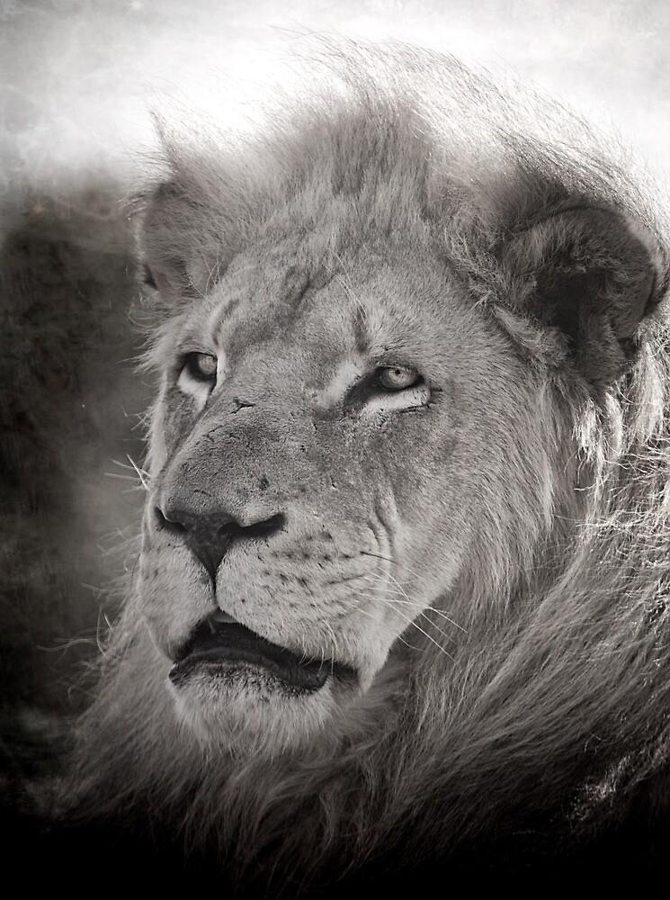 The Old King IV by Natalie Manuel