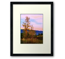 Gradual Autumn Framed Print