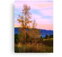 Gradual Autumn Canvas Print