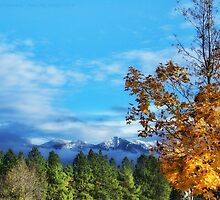 The End of Indian Summer by rocamiadesign