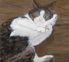 Concern - cat portrait by Nicla Rossini