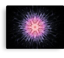 Chrysanthemum Abstract Fractal Canvas Print