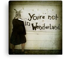 Not Wonderland Canvas Print