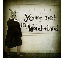 Not Wonderland Photographic Print