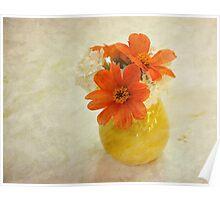 Orange daisies in yellow vase Poster