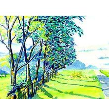 Fenney Bentley, Derbyshire by WaterGardens