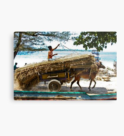 Cidomo horse carts of the Gili Islands.  Metal Print