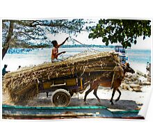 Cidomo horse carts of the Gili Islands.  Poster