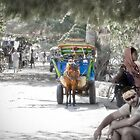 Cidomo horse carts of the Gili Islands 2.  by Normf