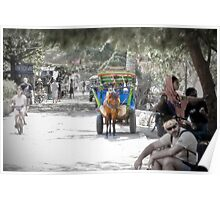 Cidomo horse carts of the Gili Islands 2.  Poster