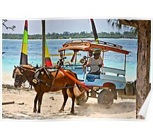 Cidomo horse carts of the Gili Islands 5 Poster