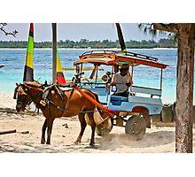 Cidomo horse carts of the Gili Islands 5 Photographic Print