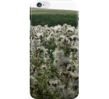 Autumn Thistles iPhone Case/Skin