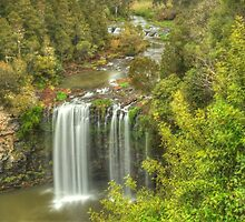 Dangar Falls From The Top by Michael Matthews
