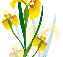 yellow iris flower design by Veera Pfaffli