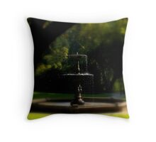 Water Shines Throw Pillow