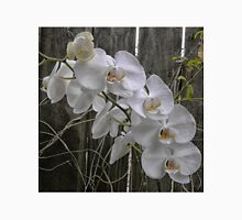 White Moth Orchid near fence Unisex T-Shirt