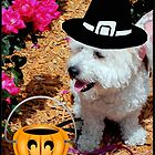 Trick or Treat!!! © by Dawn M. Becker