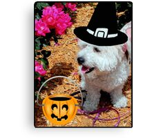 Trick or Treat!!! © Canvas Print