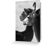 Rams Woerthe Deer Greeting Card