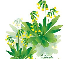 meadow flower yellow primrose design by Veera Pfaffli