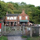 The Black Lion by GreenPeak