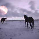 Moon Walk  by Judy Grant