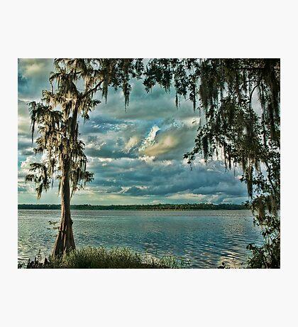 Cypress Doorway Photographic Print