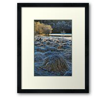 Chon Frost (1) Framed Print