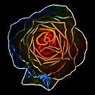 Fractal Rose by Den McKervey