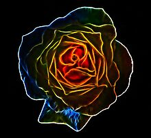 Fractal Rose by Den McKervey