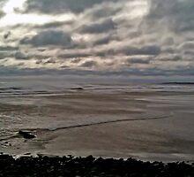 Lawrencetown Beach by blockedmuse