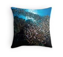 House of Glass Throw Pillow