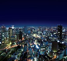 Osaka by Night - Japan by Atanas Bozhikov