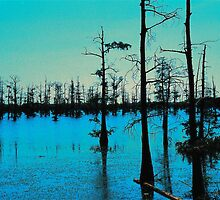 Blue Bayou-Wildlife and Fisheries-Monroe LA by soulexperience