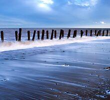 Sea Guardians  by Svetlana Sewell
