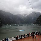 Tracy Arm by julie08