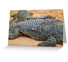 Crocodiles Greeting Card