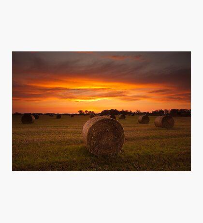Dornock Sunrise Photographic Print