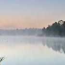Foggy Morning by Kasia Nowak
