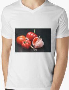 Adam And Eve's Cookbook  Mens V-Neck T-Shirt