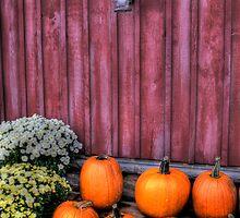 Autumn Pumpkins by Matt Erickson