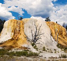 Orange Spring Mound, Yellowstone by Kenneth Keifer