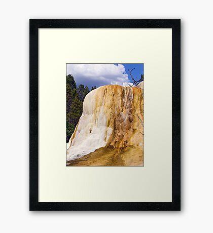 Orange Spring Mound, Closeup Framed Print