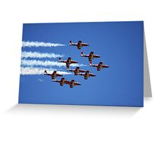Flight of the Snowbirds Greeting Card