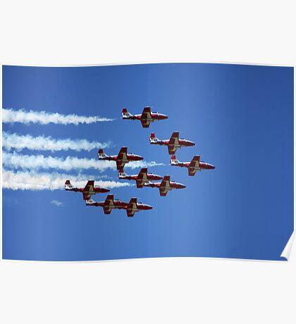 Flight of the Snowbirds Poster