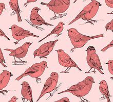 Birds by Orna Artzi